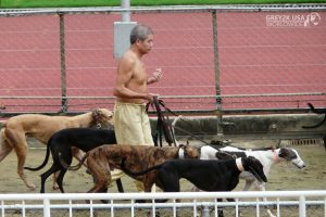 CANIDROME HANDLER WITH DOGS LEAVING KENNEL