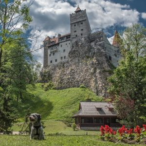 RDRT Bran (Dracula's Castle) Romania3