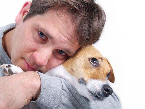 The Great Debate: do dogs enjoy hugs