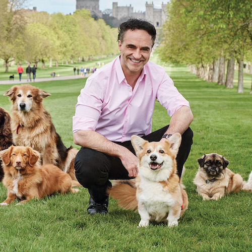 DogFest latest: Noel Fitzpatrick interview