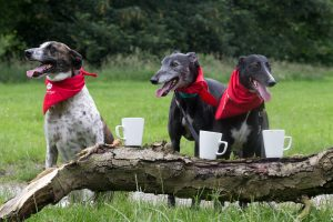 Colin, Alan, and Rosie enjoy a post donation cuppa. Rod Kirkpatrick/F Stop Press