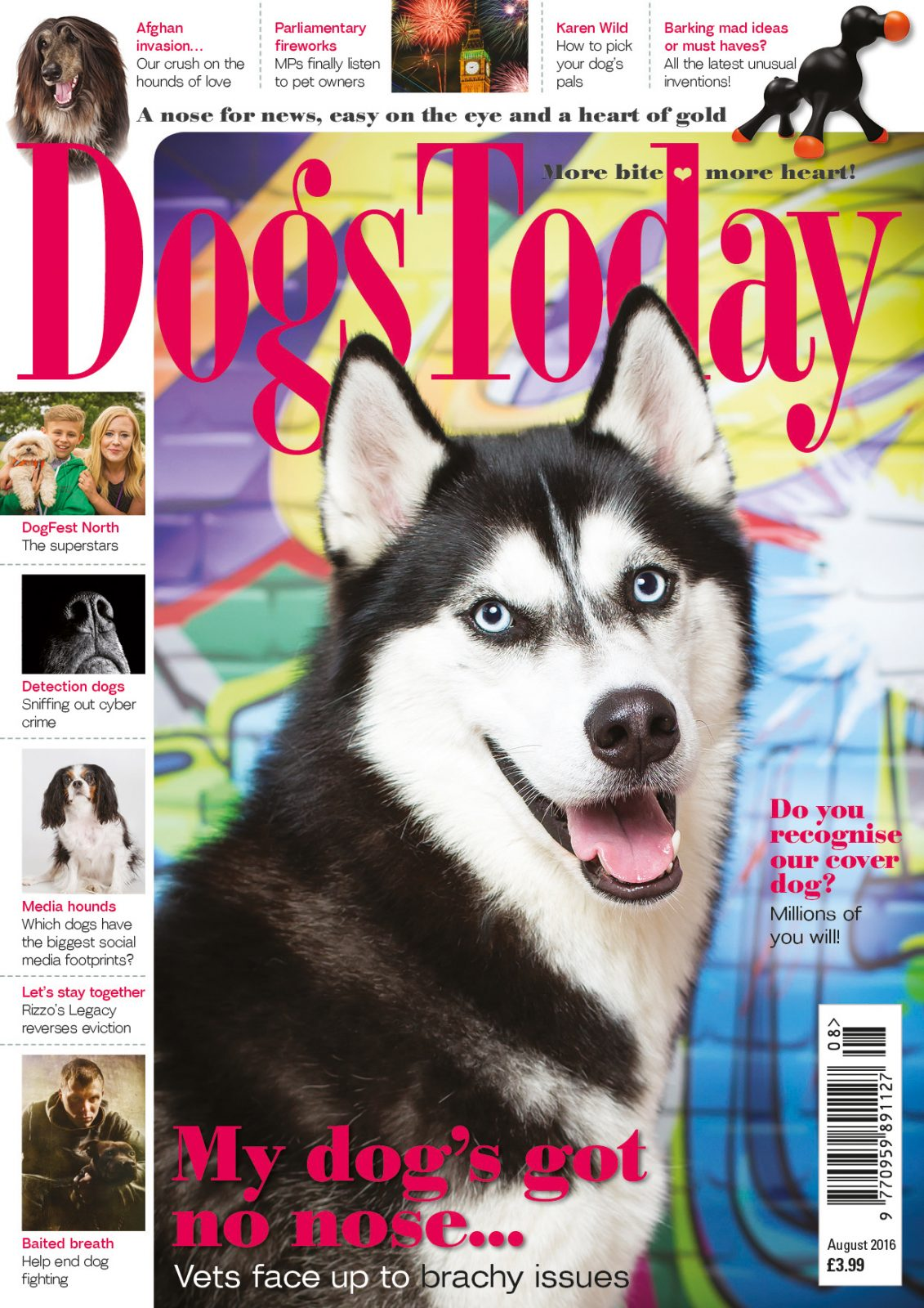 inside the issue dogs today magazine dogs today magazine 2016