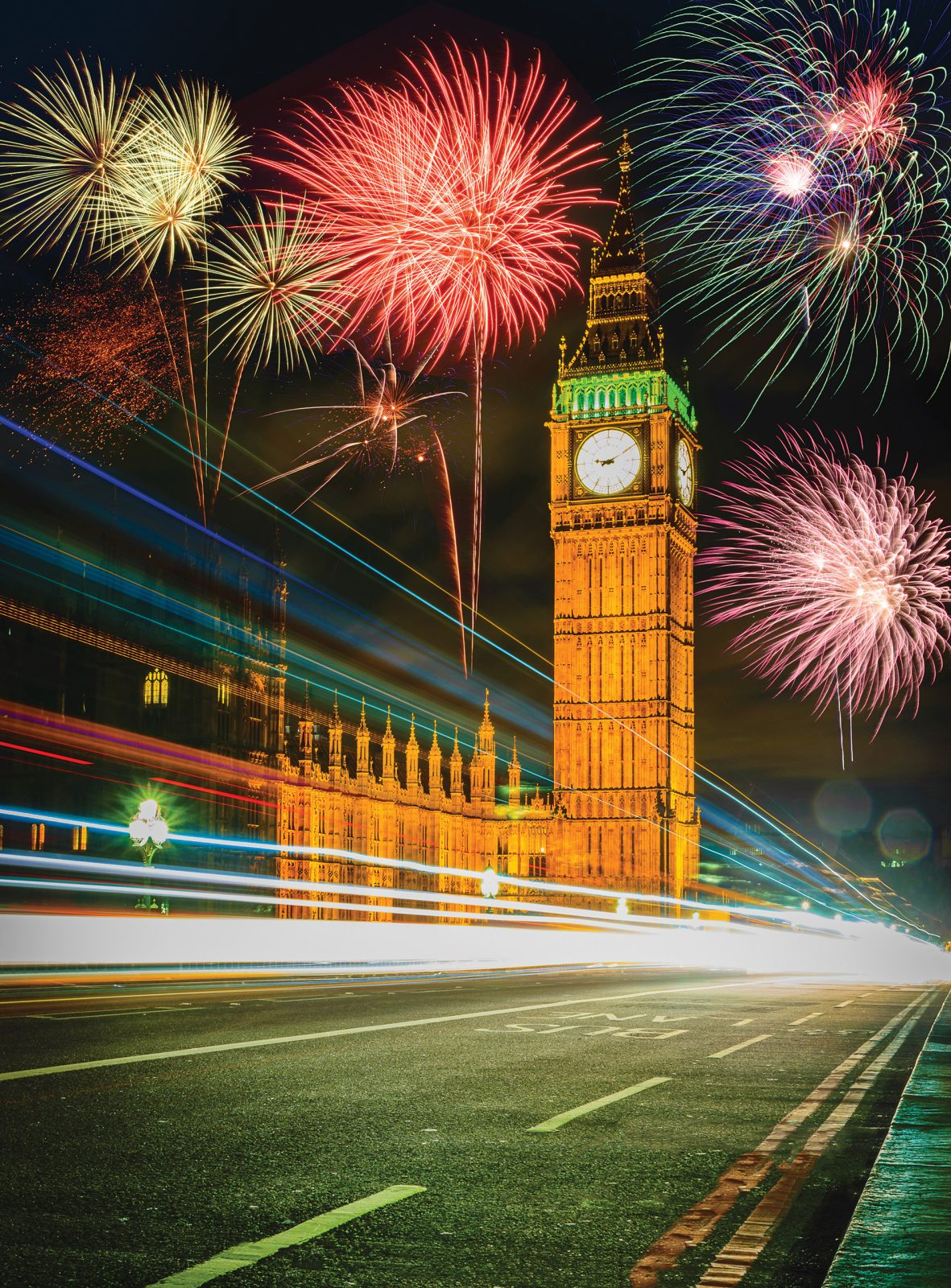 Parliamentary fireworks: MPs finally listen to pet owners