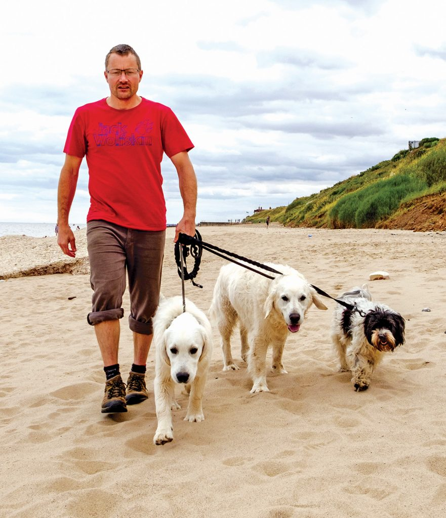 The PSPO order would force owners to use the beach