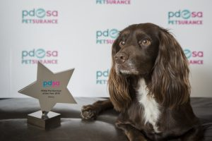 Darcy with her trophy, after a difficult few months.