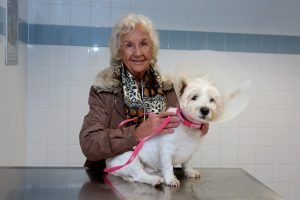 Doris Griffiths with her dog Max who was brought back from the dead by PDSA vets in Kirkdale, Liverpool, after suffering a cardiac arrest. The vet team carried out CPR for around five minutes to get his heart beating again.