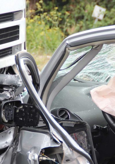 Car crash safety warning for canine passengers
