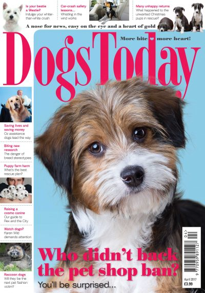 Dogs-Today-Magazine-April-2017
