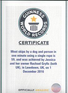 guinness record award