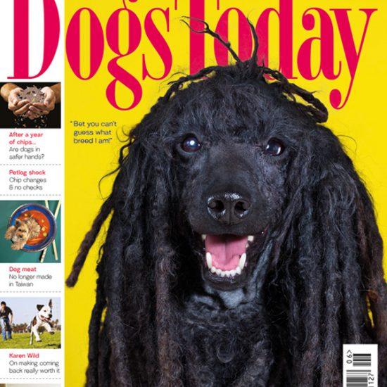 June 2017 magazine