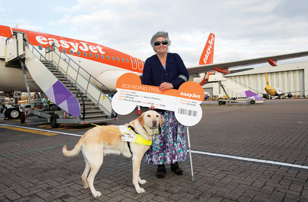 Guide dog Joey takes his 35th easyJet flight with owner