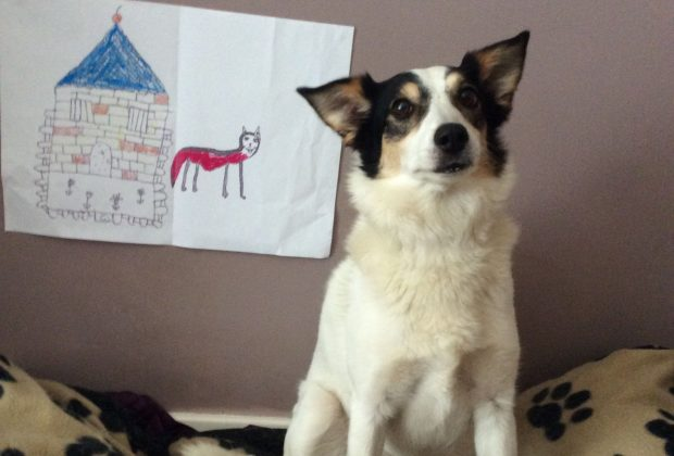 Kezzie the Battersea rescue dog sits with her drawing