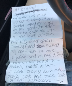 The note found with Chewy the Chihuahua cross puppy