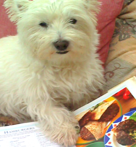Westie Bosley and the cookery books