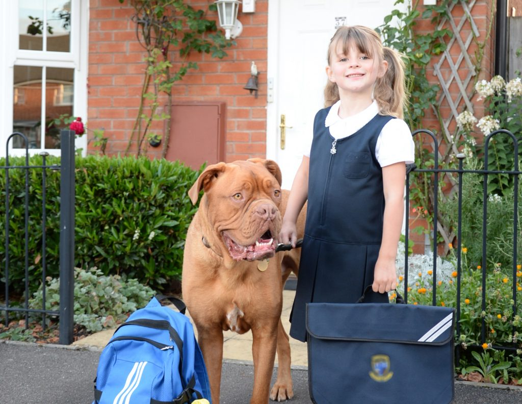 A schoolgirl and a Dogue de Bordeaux stand in front of a house