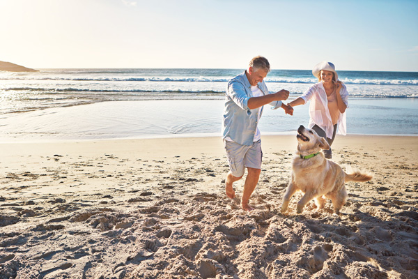 5 things to consider when planning a holiday with your dog