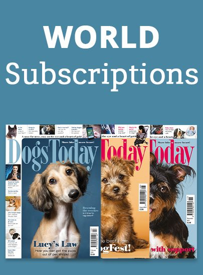 World Subscription
