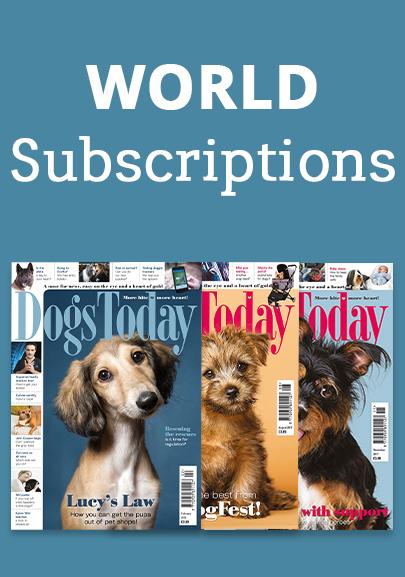World Subscription