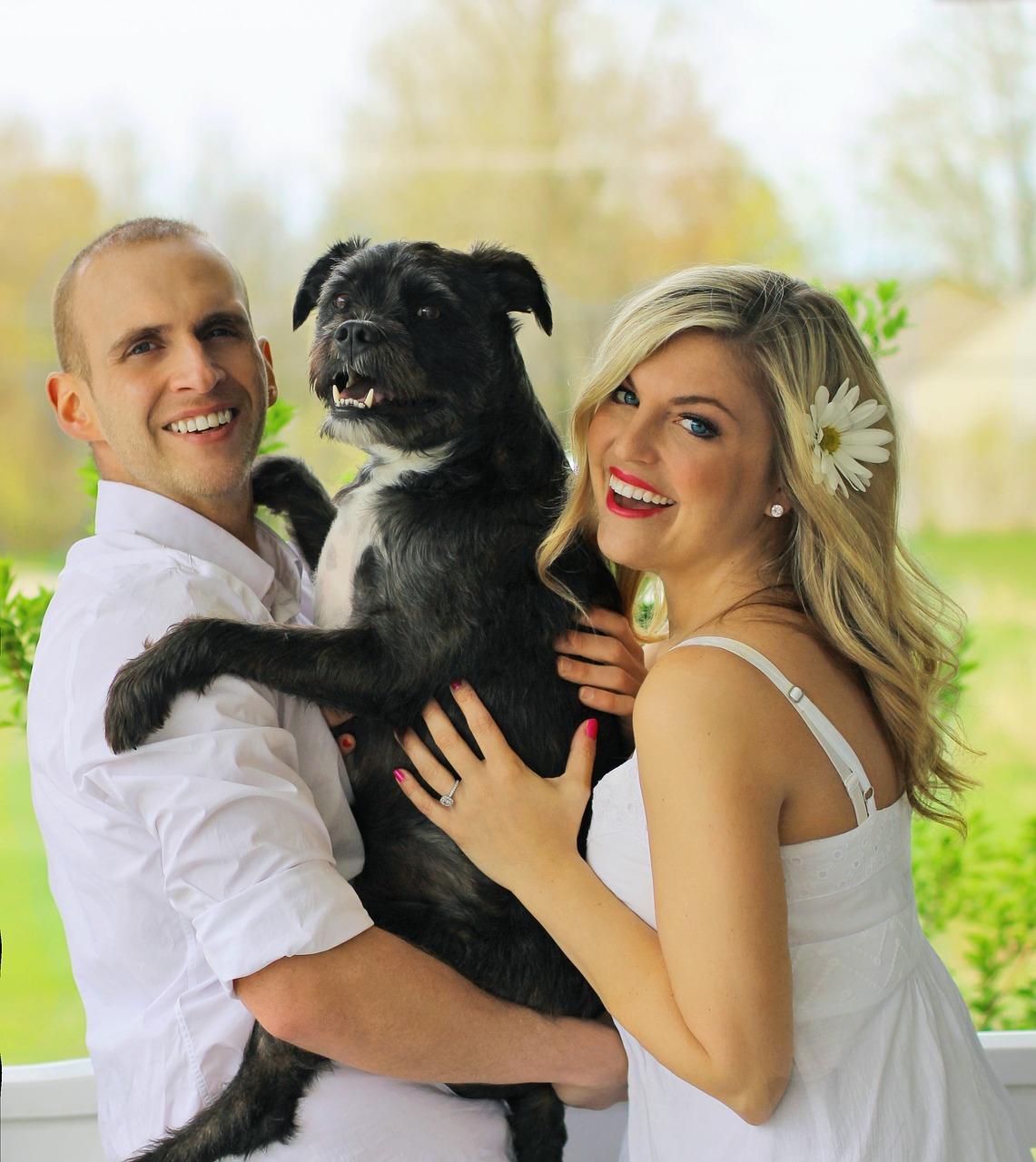 Divorce Cases: Dogs Are 'bones Of Contention' In Divorce Cases, Says