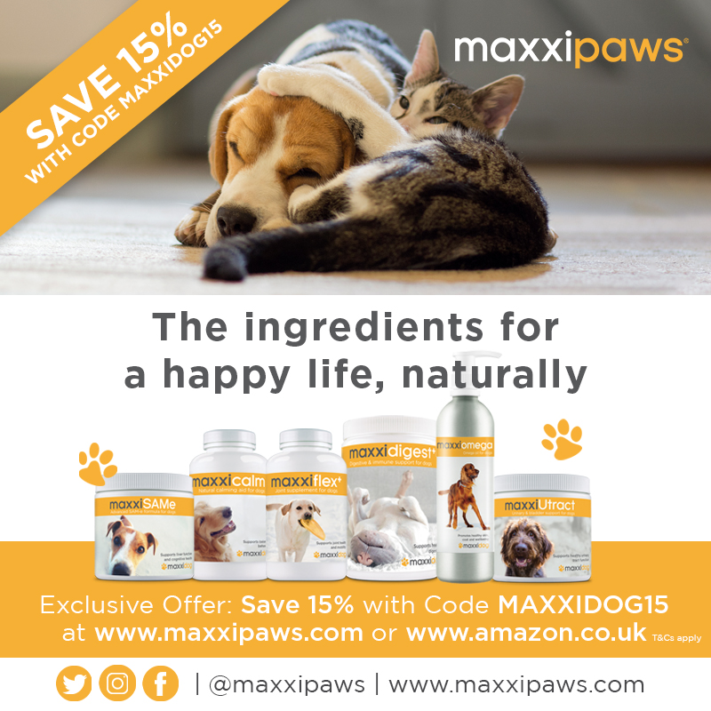MaxxiPaws