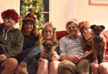 Stolen border terriers with family