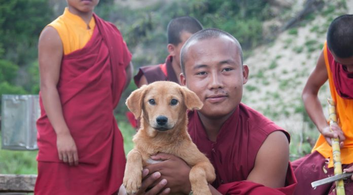 Man with dog, Bhutan