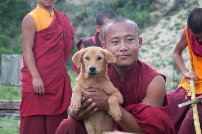 Man with dog, Bhutan
