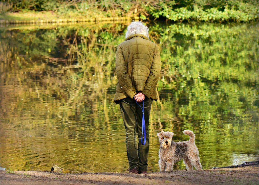 pets help prevent elderly suicide