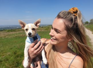 vlog to help owners of puppies in lockdown