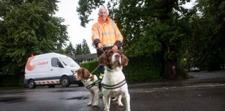 sniffer dogs hunting for gas leaks