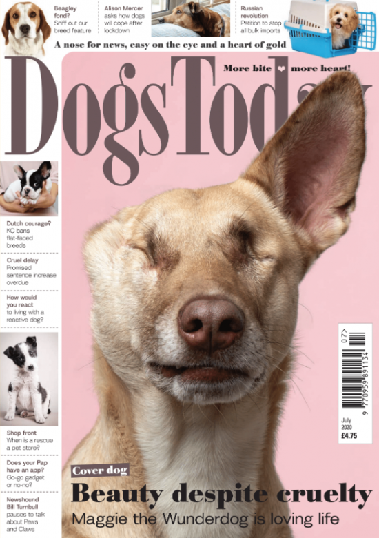 July 2020 issue