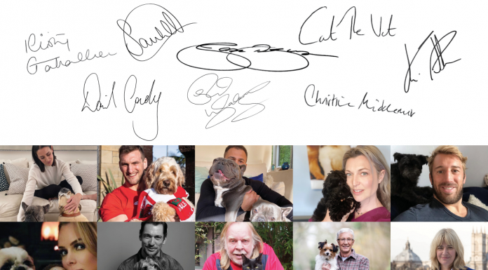 celebrities open letter against illegal puppy sellers