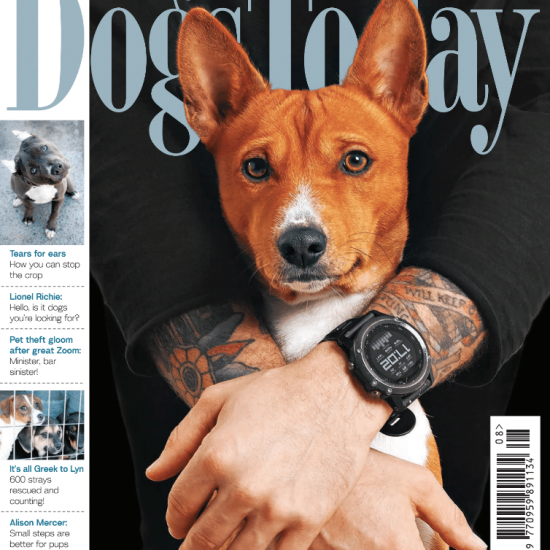 August 2020 Dogs Today Magazine Cover