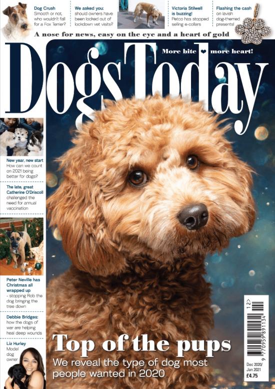 Dec/Jan 2021 magazine