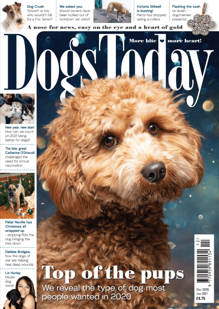 Dec/Jan issue is available for free
