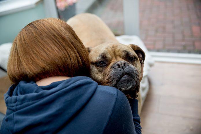economic abuse victims with dogs