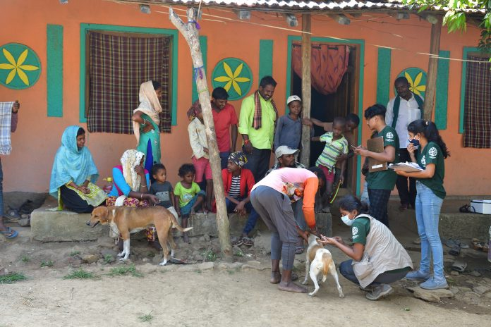 Spay and Neuter, rabies vaccination of dogs